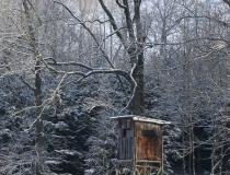 Kazatelna na okraji lesa