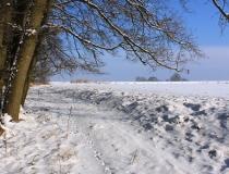 36.Cesta sněhem zavátá