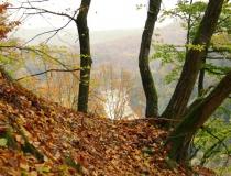 62.Barvy podzimu